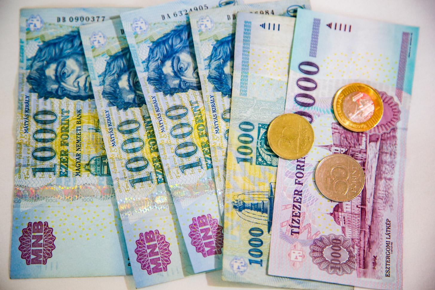 Hongaars geld: de florint
